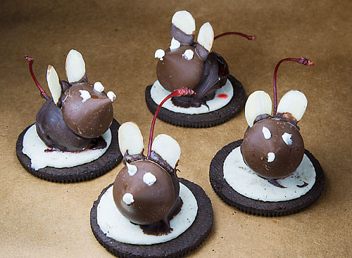 Chocolate mice with almond ears,